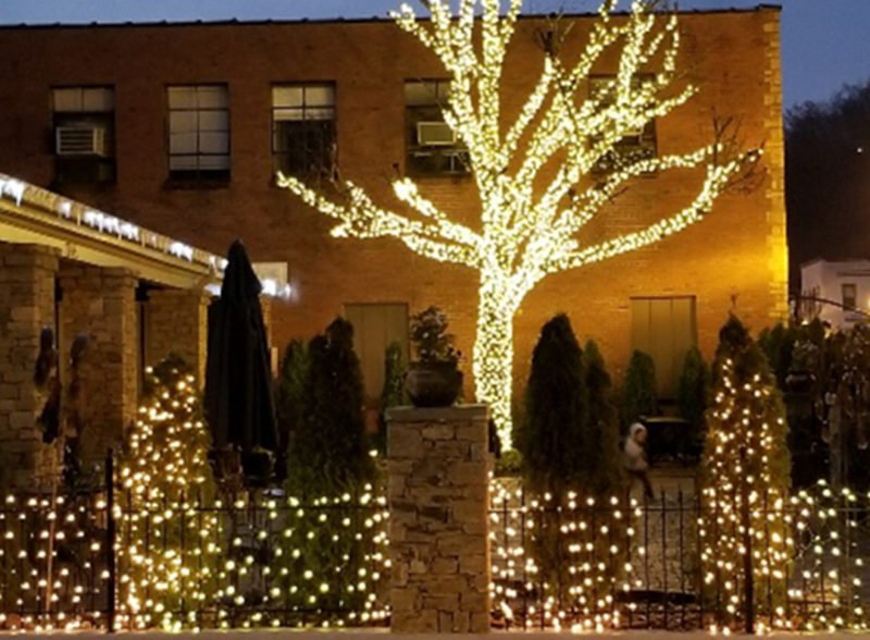 commercial seasonal lighting